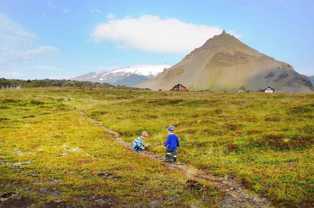Kinder spielen auf einer Wiese auf Island zu allen Jahreszeiten in Island