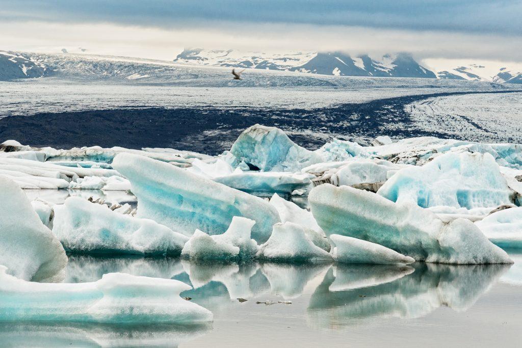 Gletscherlagune mit Eisbergen und Gletscher im Hintergrund