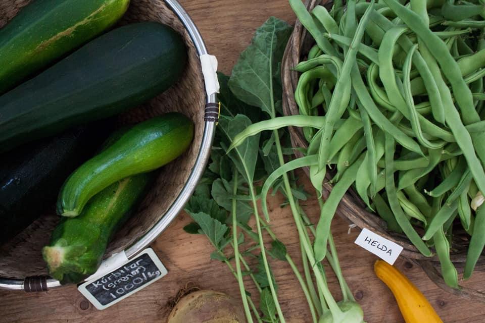 Island, Essen, Gemüse , Bauernmarkt, frisch, nachhaltig