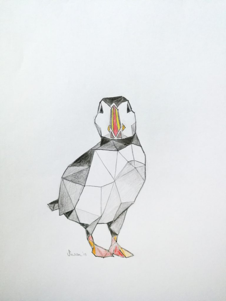 Buntstiftzeichnung eines Papageitaucher in Island