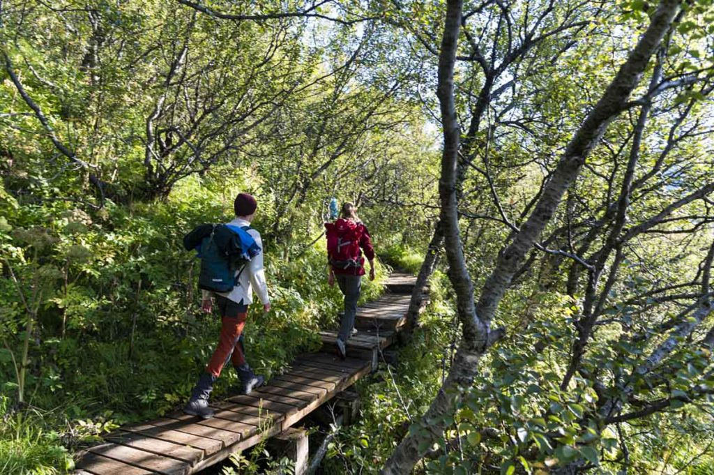 Skaftafell in Südisland bietet eine eine große Auswahl an Wanderungen